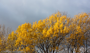 Photo: Autumn