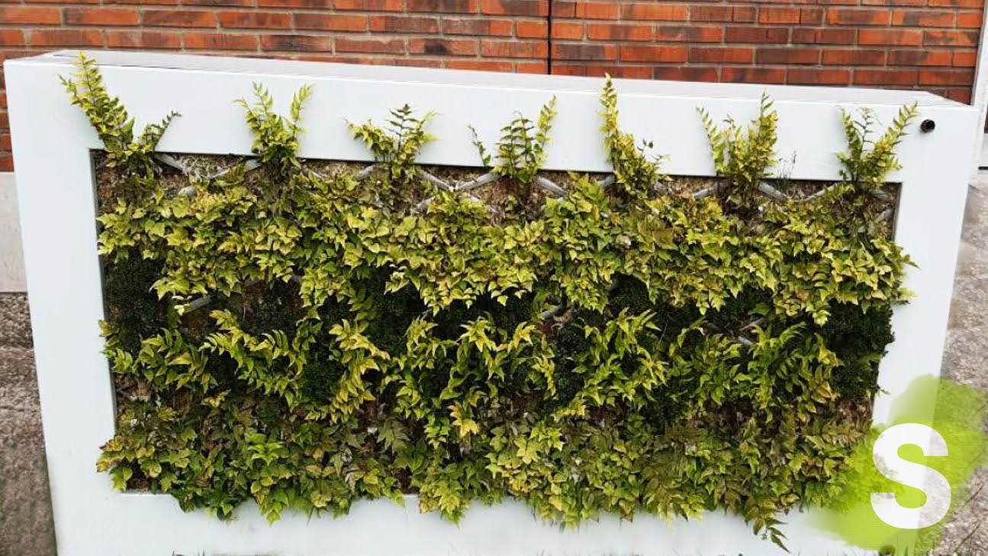 Jardín de sistema LeafBox en Valladolid