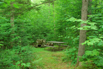 Photo: Picnic area at Osmore Pond, New Discovery State Park by Linda Carlsen-Sperry.