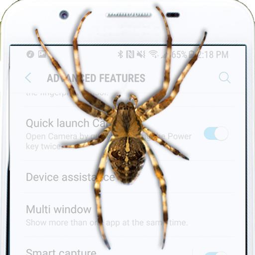 Spider on screen prank (app)