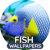 Wallpapers with fish