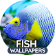 Wallpapers with fish for PC-Windows 7,8,10 and Mac