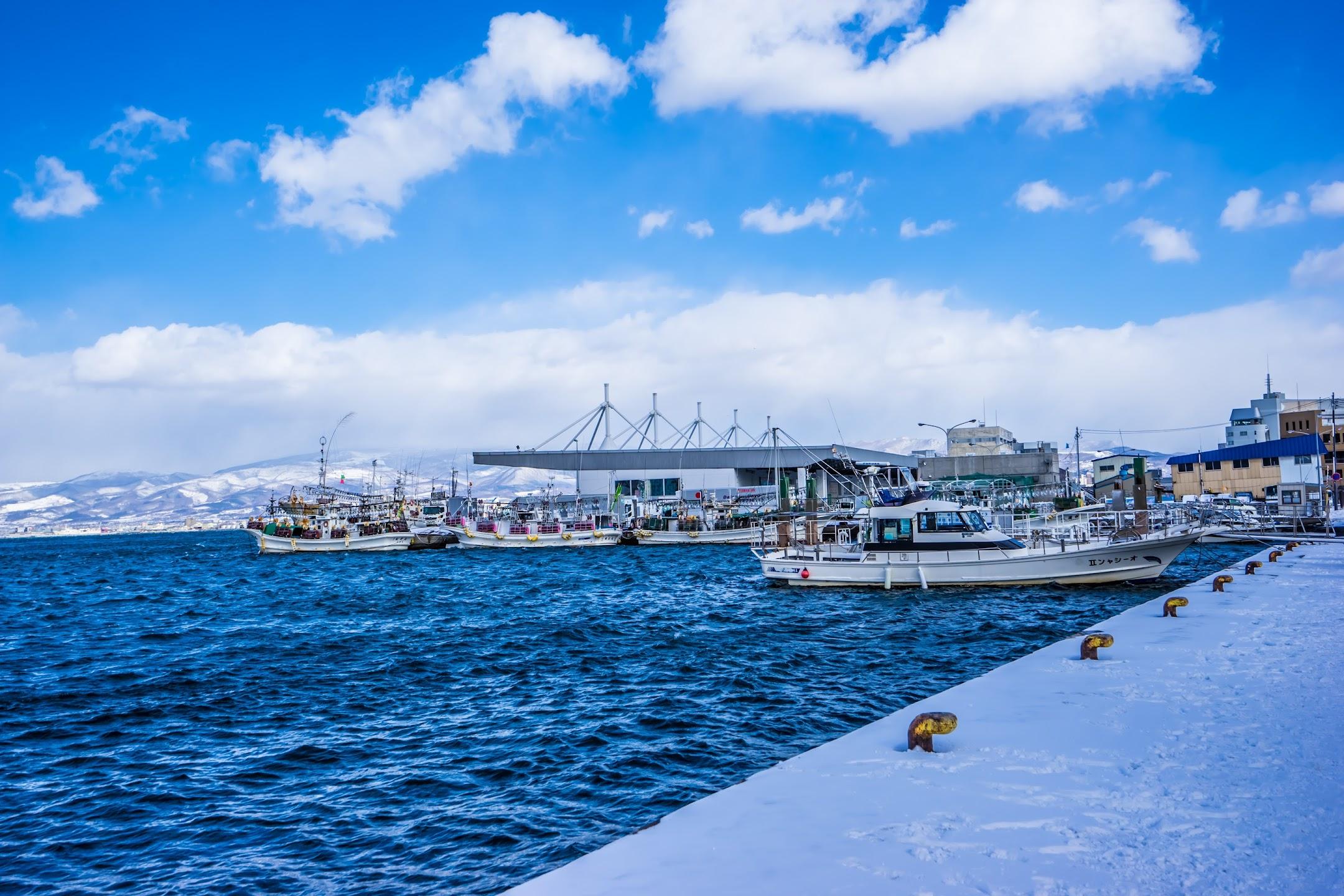 函館 ベイエリア 函館湾3