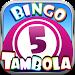 Bingo - Tambola | Twin Games icon