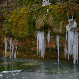 Icicle by Marco Bertamé - Nature Up Close Water ( icecold, winter, icicle, water )