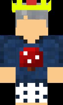 template | Nova Skin