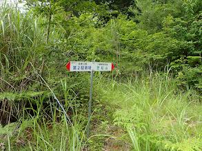 林道と合流(右が正解)