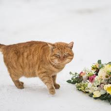 Wedding photographer Elena Oskina (oskina). Photo of 18.02.2018