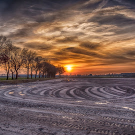 traces at the field by Egon Zitter - Landscapes Prairies, Meadows & Fields ( grass, traces, agriculture, meadow, plow, curves )