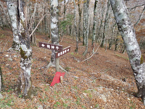 主稜線を外れ檜塚へ