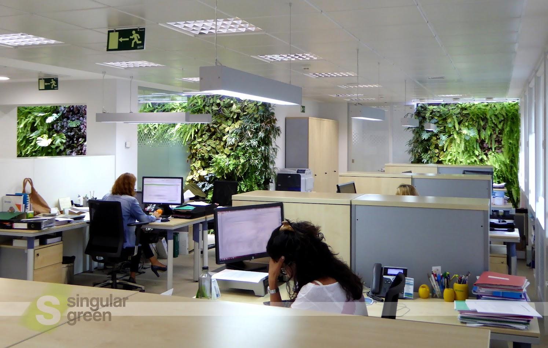Jardines verticales en oficinas de Madrid