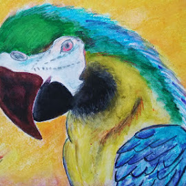parrot painting by vp singh by Vp Singh - Painting All Painting