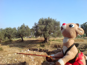 Photo: That over there, that's Sparta, too!