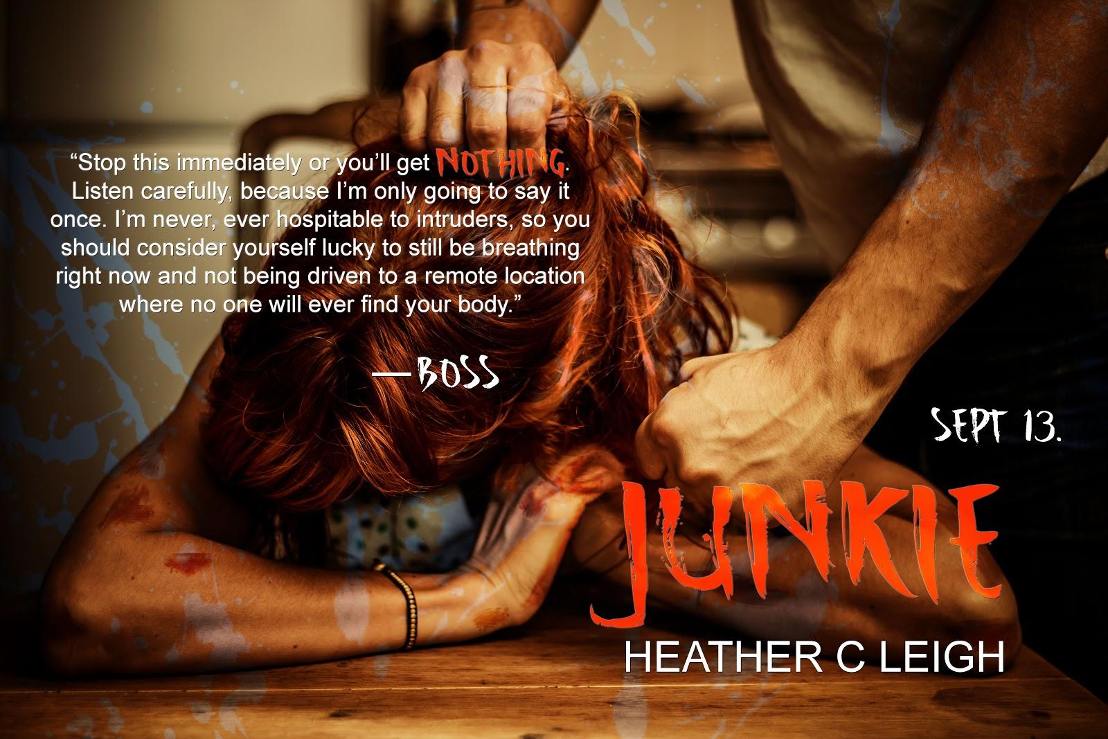 JunkieAd4.jpg