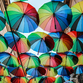 Umbrella flollow by Miruna Mihai - City,  Street & Park  Street Scenes ( joyful, colourful, joy, colors, art, street, umbrella, rainbow, photography )
