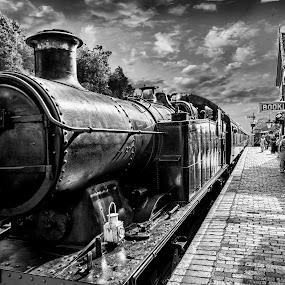 steam train by Peter Wyatt - Transportation Trains ( severnvalley, blackandwhite, steamtrain.railway, train, trains,  )