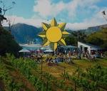 Sunlit Souls - Summer Decompression : Silvermist Wine Estate