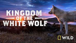 Kingdom of the White Wolf thumbnail