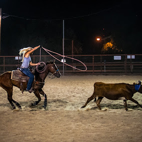 Rope 'em Cowgirl by Robb Harper - Sports & Fitness Rodeo/Bull Riding ( roping, horse, rodeo, night, women )