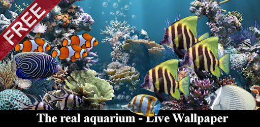 The Real Aquarium Live Wallpaper Apps On Google Play