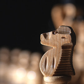 Chess horse by Aleksander Cierpisz - Artistic Objects Other Objects ( craft, wooden, wood, low key, horse, white, chess, low light, chessboard, bokeh, crafted, jumper )