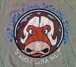 Photo: T-shirt: LARS logo