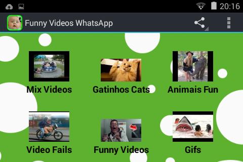 Videos engraçados WhatsApp