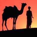Camel Live Wallpaper icon