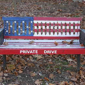 FLAG BENCH by Phil Williams - City,  Street & Park  City Parks ( stars n stripes; flag; bench )