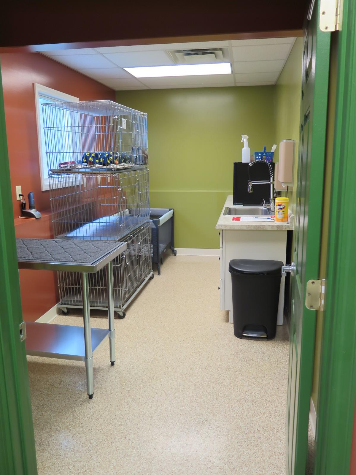 cat treatment area.jpg