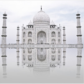 Taj by Rs Photography - Buildings & Architecture Public & Historical ( love, mahal, reflection, taj, taj mahal )