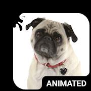 Cute Pug Animated Keyboard