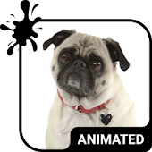 Cute Pug Animated Keyboard