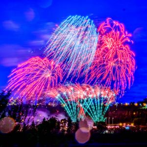 8277 jpg Firework Aug -18-1.jpg