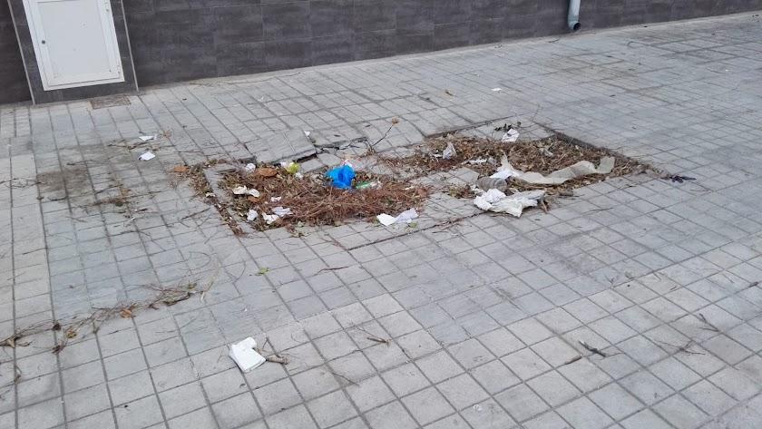 IU critica calles en mal estado y falta de limpieza.
