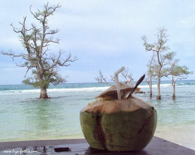 Menikmati Minum Air Kelapa Muda dengan suasana pantai yang tenang dan indah di Pantai Pasir putih Lhok Me