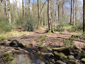Photo: The track goes across a brook
