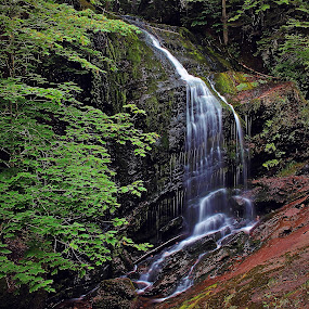 FULLER FALLS by Gary Colwell - Landscapes Waterscapes ( fundt trail, fuller falls, new bunswick,  )