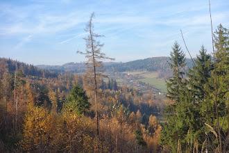 Photo: Pohled z lesní cesty na Českou Ves