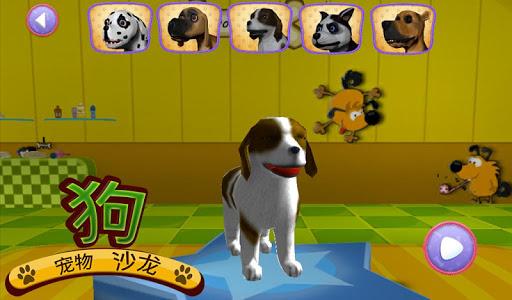 宠物狗沙龙c