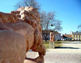 Photo: A kapu már nincs meg, de  az egykor kapuőrző, címertartó oroszlán-kőszobrok állnak.