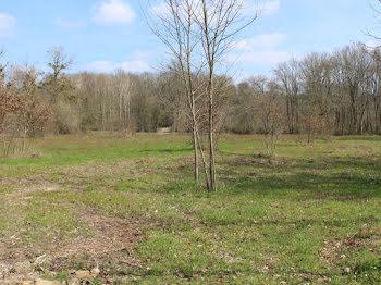terrain à Casteljaloux (47)