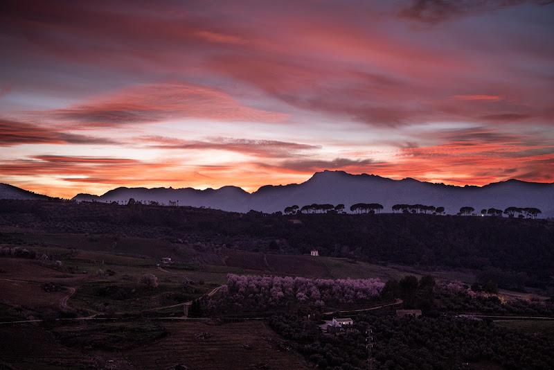 Andalusia pink sunset di loredana de sole