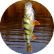 Все о рыбалке for PC-Windows 7,8,10 and Mac