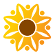Sunflower Health Plan Apk