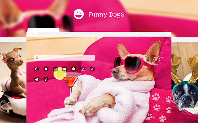 Funny Dogs & Puppies - Amusing Pet Wallpapers