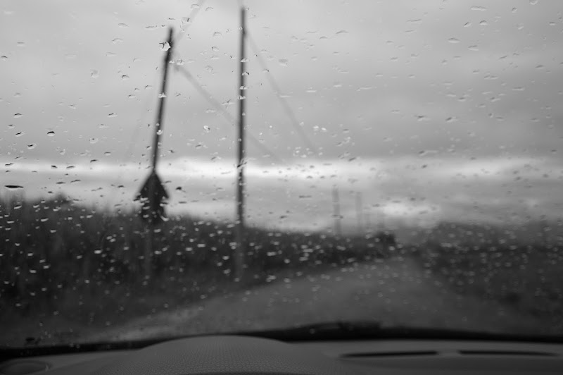 Grey rain di Steo