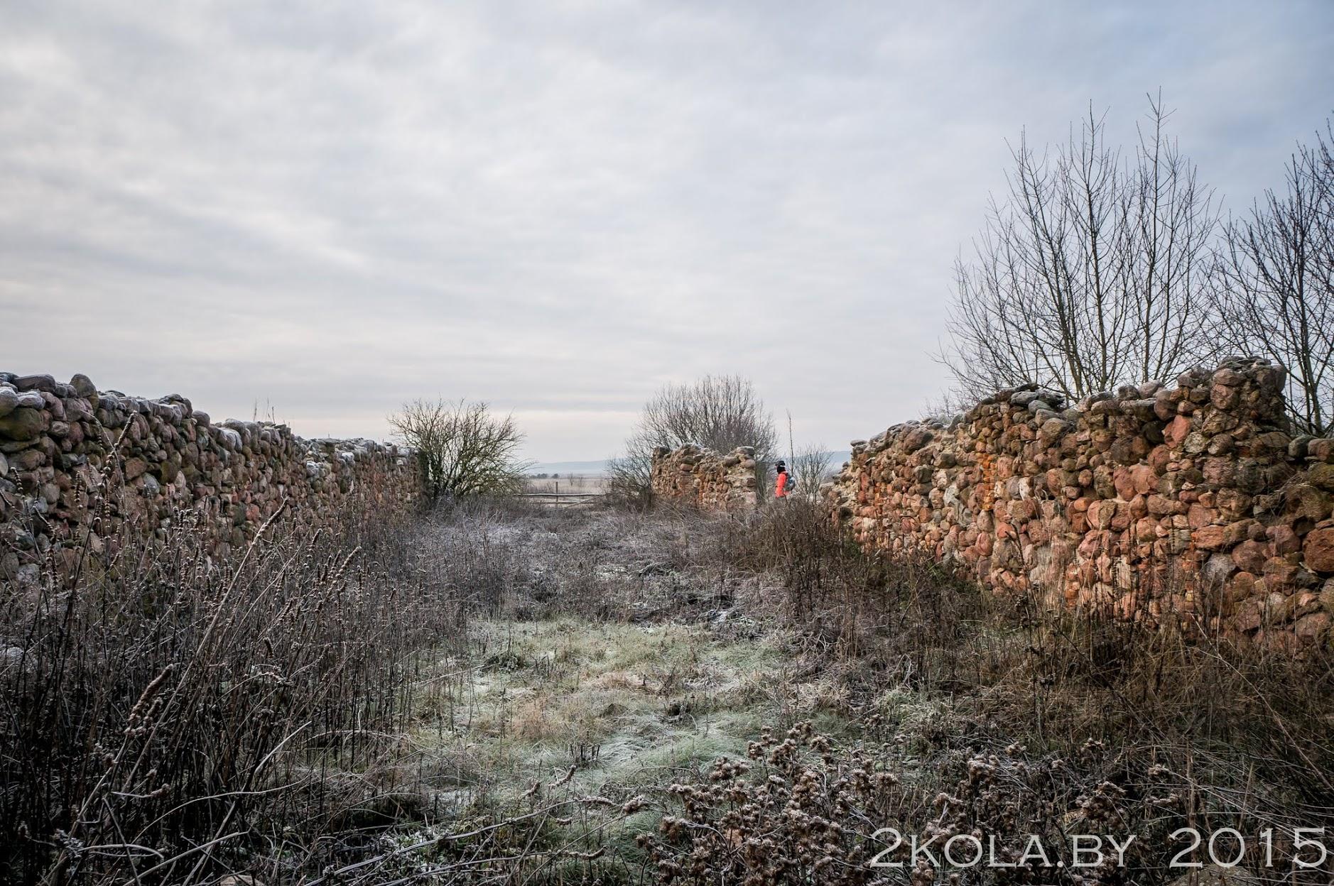 руины усадьбы Рудовка. Конюшня