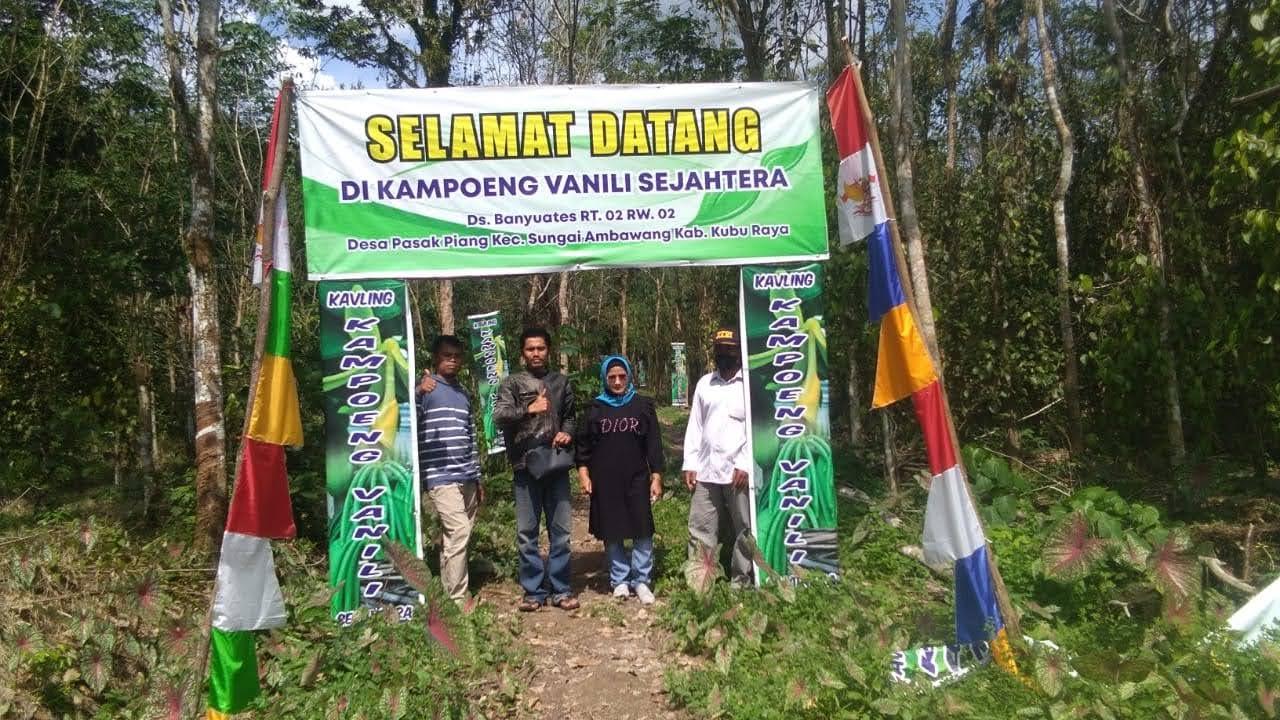 Anak Muda di Kubu Raya Membudidayakan Vanili Borneo