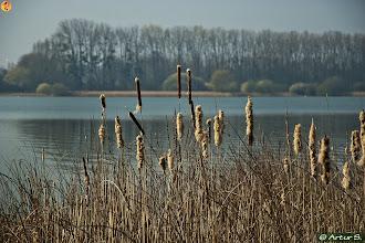 Photo: Base de loisirs de St Quentin En Yvelines (Trappes)